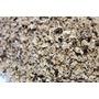 ''Sel fou'' Forestier © au gros sel de source 100% naturel de Salies de Béarn , recharge 85 gr.